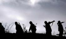 Bitliste 10 terörist ölü, 2 terörist ise sağ olarak ele geçirildi