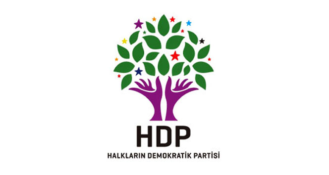 HDPnin yeni eş genel başkanı Serpil Kemalbay