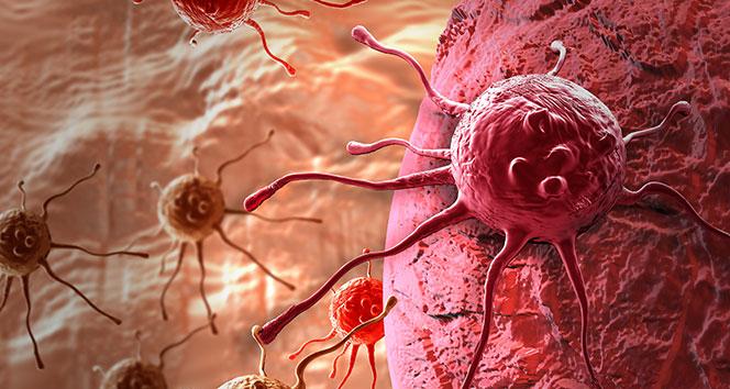 Türkiyede her gün 450 kişiye kanser teşhisi koyuluyor