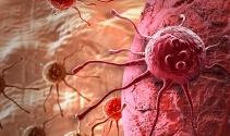 'Kanser ve kalp hastalığı' korkusu 'check-up'a yönlendiriyor