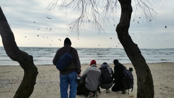 Kuş fotoğrafçıları İstanbul'a akın etti