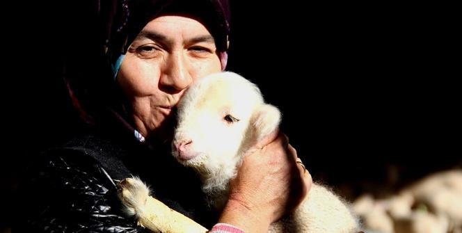 Sakat kuzuya anne şefkati