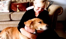 Apartmanda beslenen köpek mahkemelik oldu