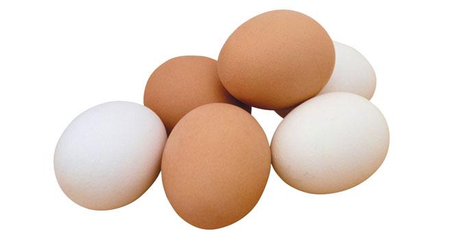 Tavuk yumurtası üretimi Kasım'da yüzde 0,4 azaldı