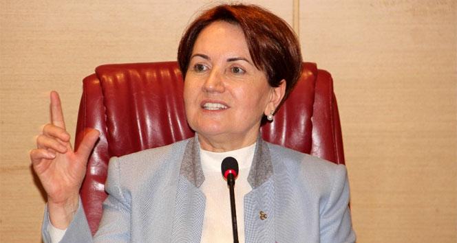 Genel başkan olursa MHP yüzde kaç oy alır?