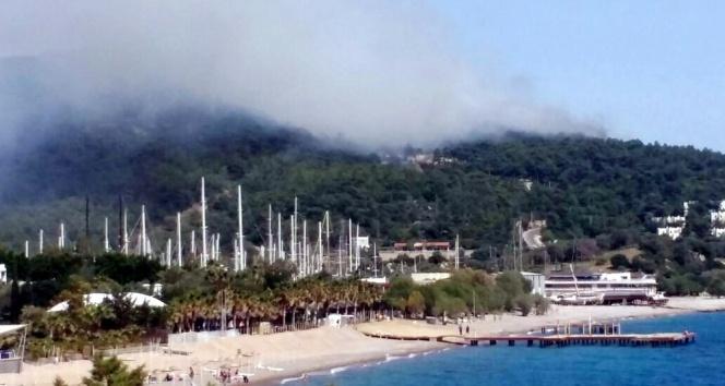 Bodrumda orman yangını otellere doğru ilerliyor
