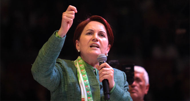 Image result for akşener