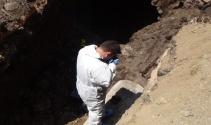 Siverek'te yapılan kazıda kemikler ve tünel bulundu