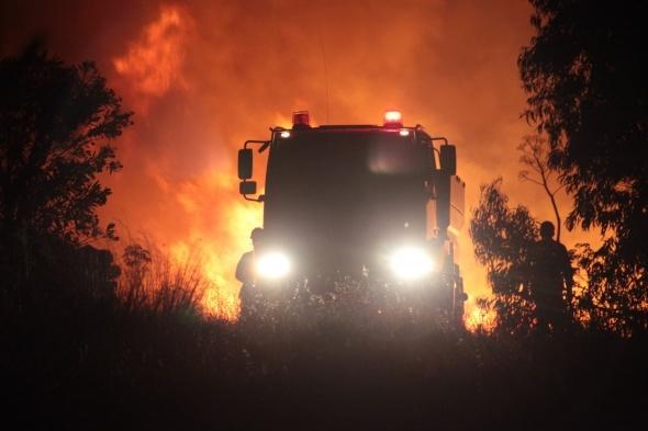 22 saat süren yangında 220 hektar alan kül oldu