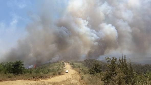 Edirne'de yangın tekrar başladı