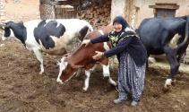 Türkiyenin gündemine oturan o yaşlı çift bu defa sevinçten ağladı