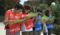Öğretmenler, Oryantiring yarışmasında birinci olmak için kıyasıya yarıştı