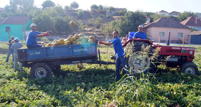 Vodafone akıllı köy ilk mahsulünü verdi