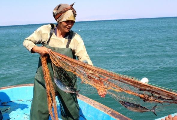 Ağların sultanı ekmeğini denizden çıkartıyor
