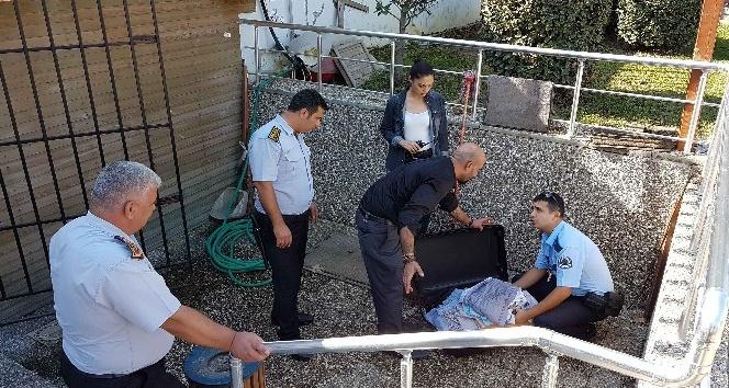 Gezmeye giden vatandaşın taşımaya üşendiği valiz polisi alarma geçirdi