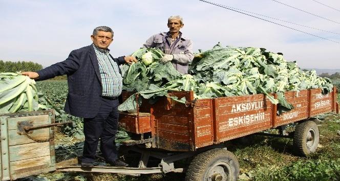 Kış sebzeleri çiftçinin yüzünü güldürdü