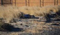 İzmirde deniz kıyısında erkek cesedi bulundu
