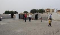 DEAŞ zulmünden kaçan Yezidiler Iraka dönmek istemiyor