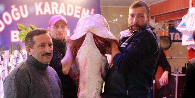 Porsuk barajından çıkan 78 kiloluk yayın balığı görenleri şaşırttı