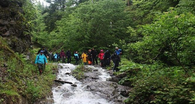 Bolu'da yürüyüş parkuru 2 bin kilometreye çıkıyor