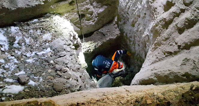 8 metrelik kuyuda eşek kurtarma operasyonu