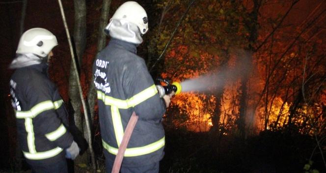 Orduda orman yangını