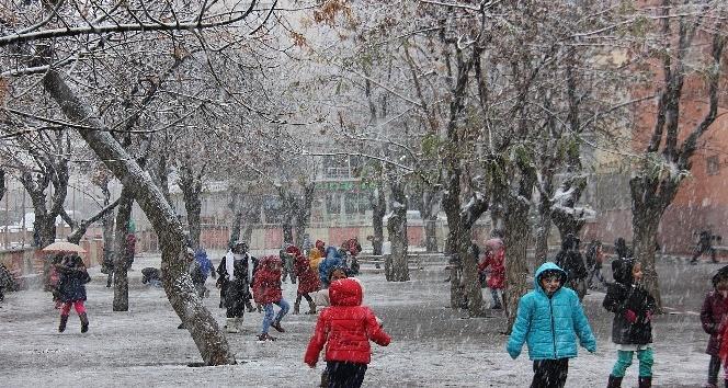Bingöl'e yılın ilk karı düştü
