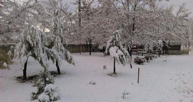 Korkuteli'ne mevsimin ilk karı yağdı