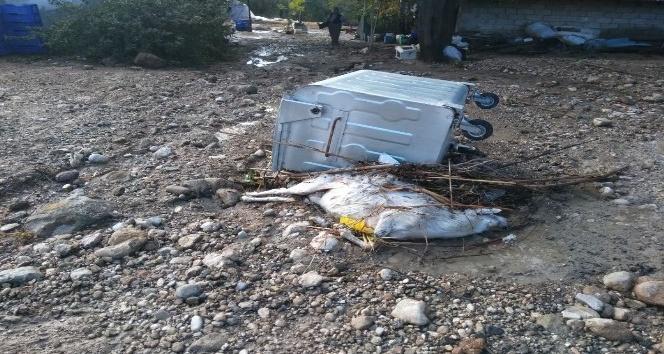 Serik'te şiddetli yağmur ahırı yıktı