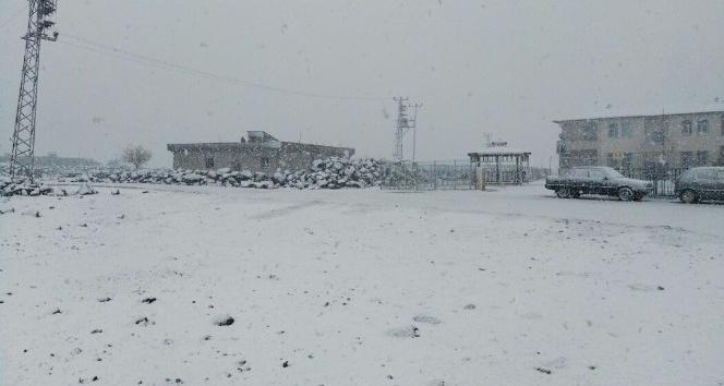 Viranşehir'e yılın ilk karı Yağdı