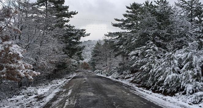 Kar yağışı kartpostallık görüntüler oluşturdu
