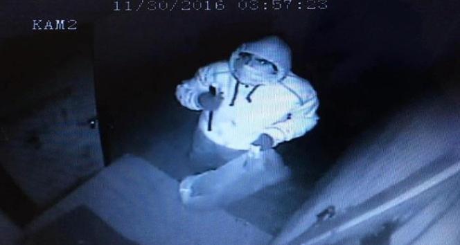 Market hırsızları güvenlik kamerasına yakalandı