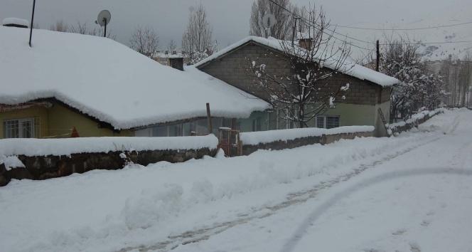 Bitliste yarım metreye yakın kar yağdı
