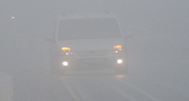 Mardin'de yoğun sis hayatı olumsuz etkiliyor
