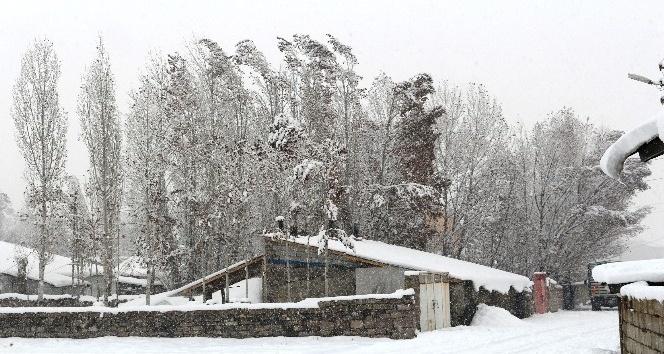 Ağrı'da 228 köy yolu ulaşıma kapandı