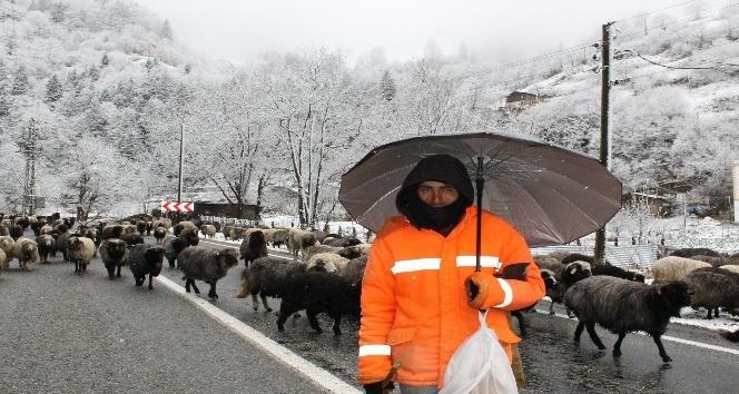 Soğuk hava ve kar yağışı Rize'nin yüksek kesimlerinde etkili oluyor