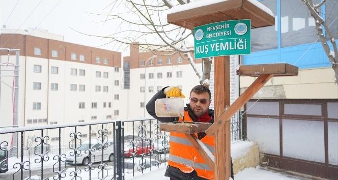 Nevşehir'de kuşlar aç kalmayacak
