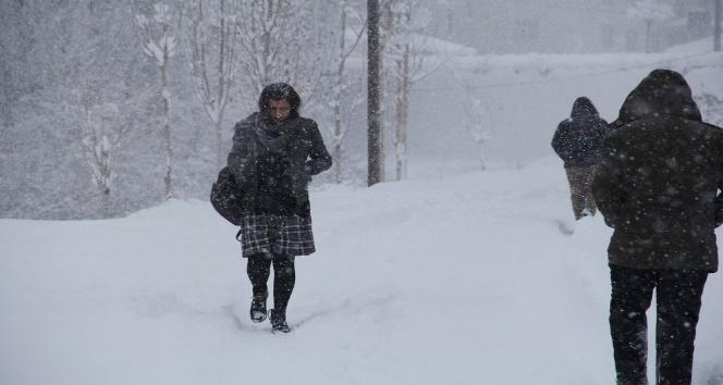 Başkale'de okullara kar tatili