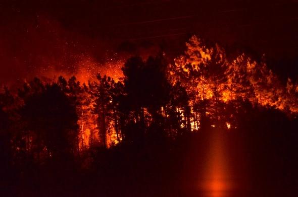 Trabzon'da büyük yangın