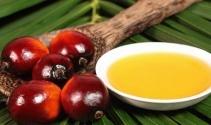 Palm olein yağının sağlığa zararları nelerdir?