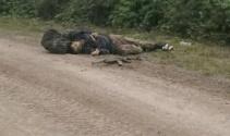 Vanda saldırı hazırlığındaki 2 PKKlı terörist öldürüldü