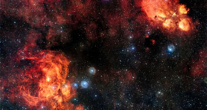 Gök kedi ve kozmik ıstakozun buluşması