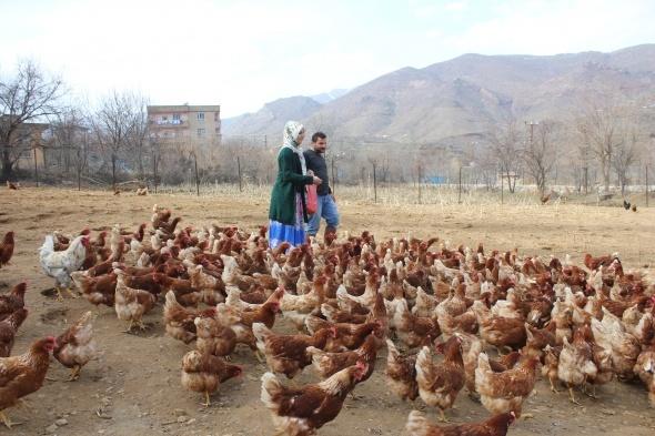 Eşine destek olmak için tavuk çiftliği kurdu