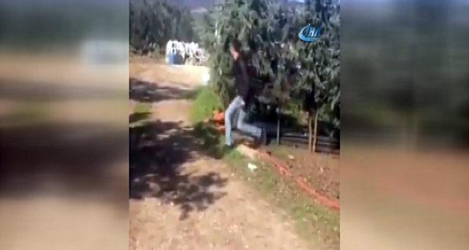 Köpeğe silahlı saldırı kamerada | Bursa haberleri
