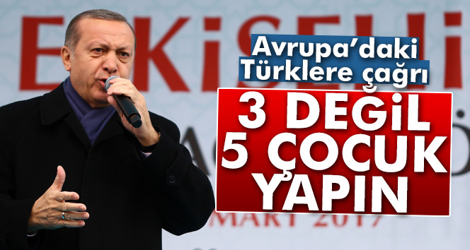 Erdoğan'dan Avrupa'daki Türklere çağrı!