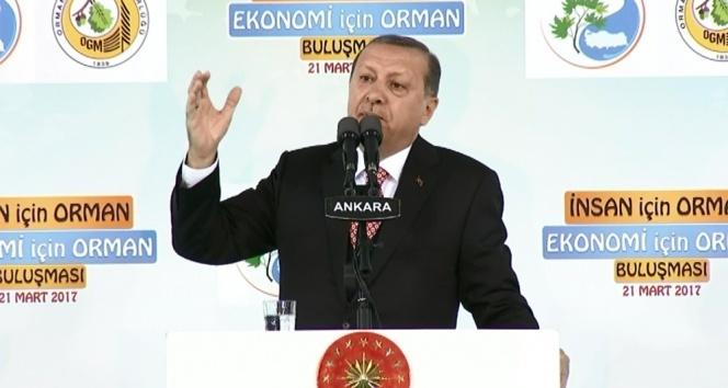 Erdoğan Avrupaya yüklendi: Topunuz gelin!