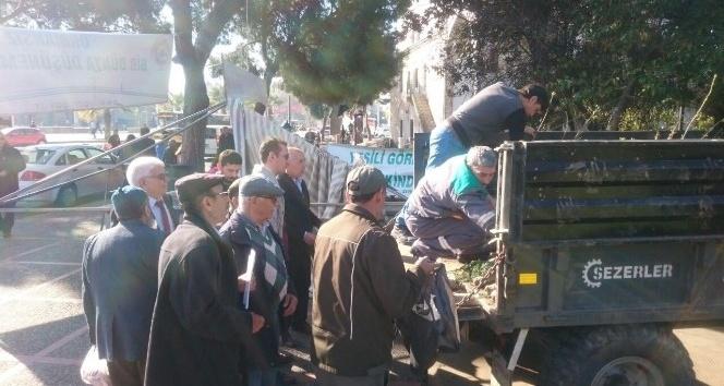 Aydın'da yeşile 4500 fidanlık katkı