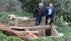 İkizderede ayılar mezarlara dadandı
