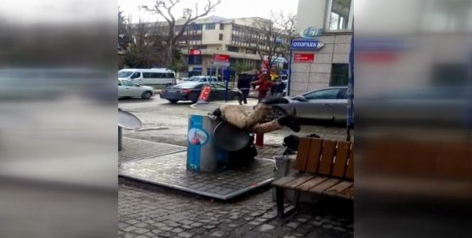 Deniz zannetti: Çöp konteynerine daldı