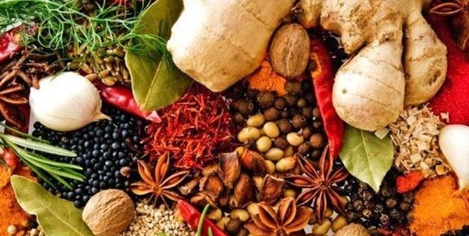 Türkiye'de yetişen en şifalı 10 bitki